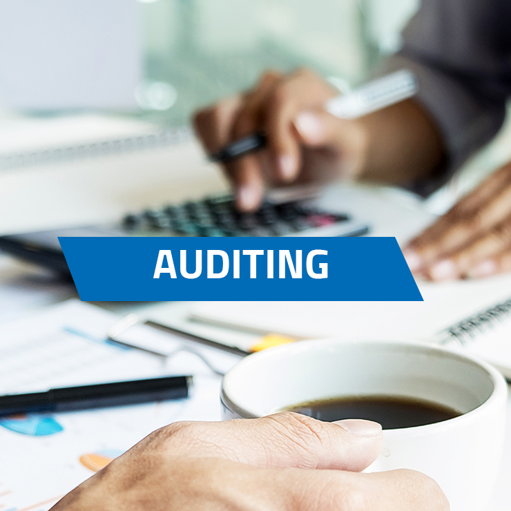 Auditing the Implementation of the Management Systems