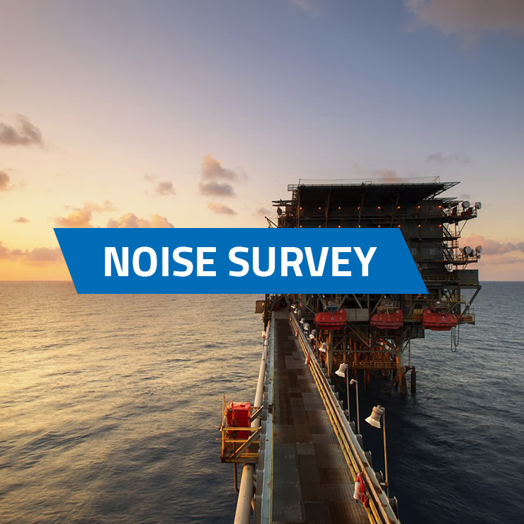 Noise survey